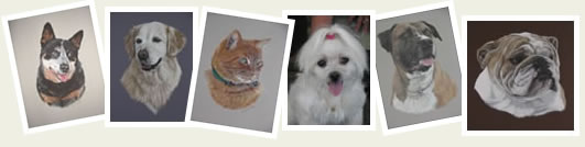 Immortalise your pet in a pastel portrait